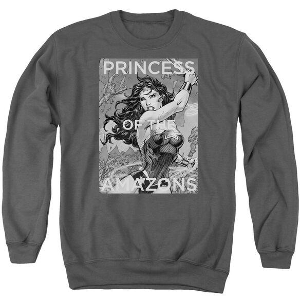 Jla Princess Of The Amazons Adult Crewneck Sweatshirt