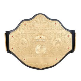 WCW Heavyweight Championship Replica Title Belt
