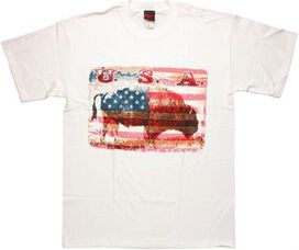 USA Buffalo Subtle T-Shirt