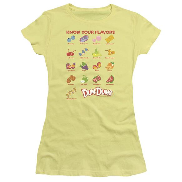 Dum Dums Flavors Short Sleeve Junior Sheer T-Shirt