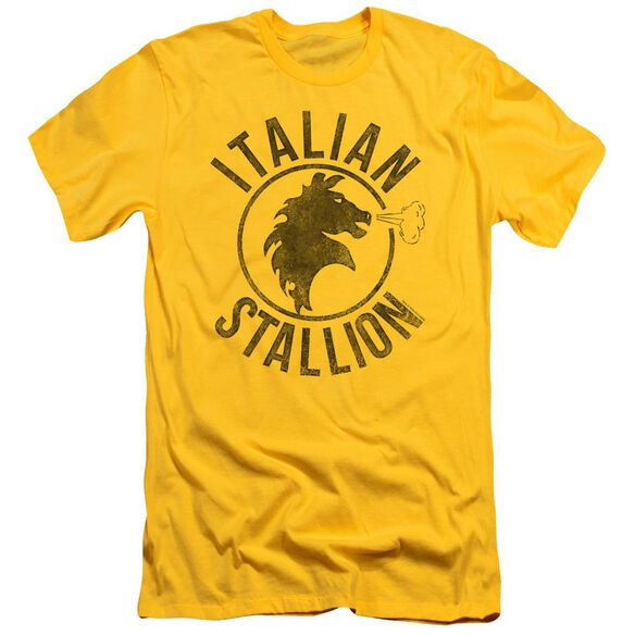 Rocky Italian Stallion Horse Short Sleeve Adult T-Shirt