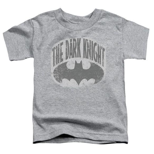 Batman Dark Knight Shield Short Sleeve Toddler Tee Heather Sm T-Shirt