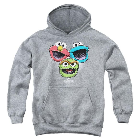 Sesame Street Halftone Heads Youth Pull Over Hoodie Athletic