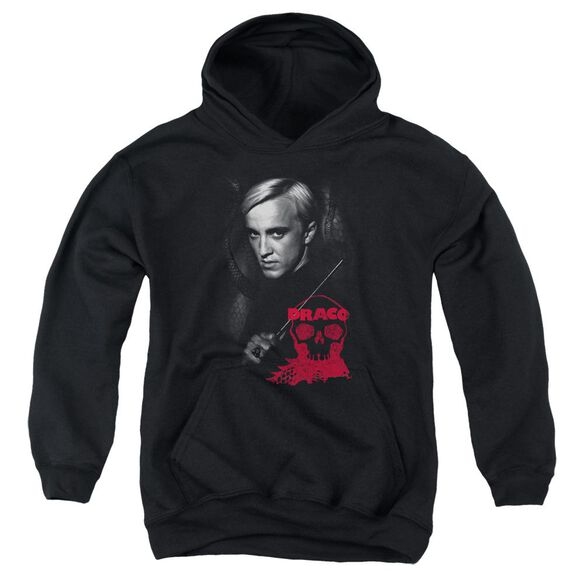 Harry Potter Draco Portrait Youth Pull Over Hoodie