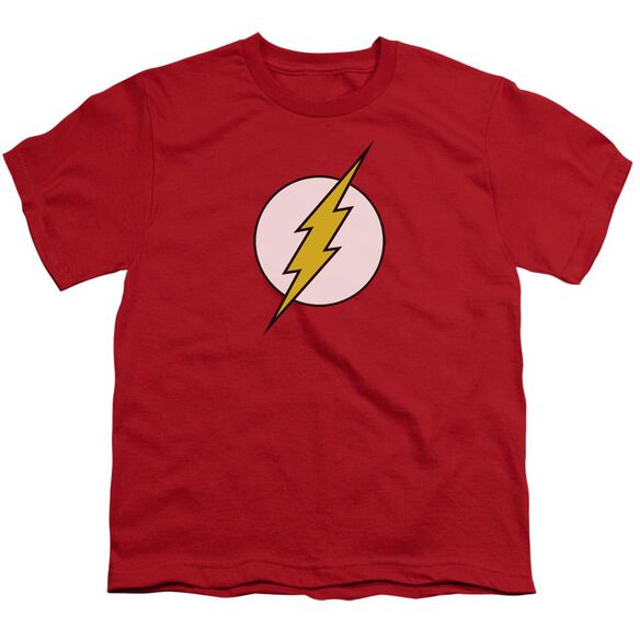 Dc Flash Logo Short Sleeve Youth T-Shirt