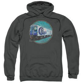 Chicago The Rail Adult Pull Over Hoodie