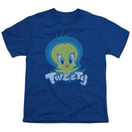 Looney Tunes Tweety Swirl Short Sleeve Youth Royal T-Shirt