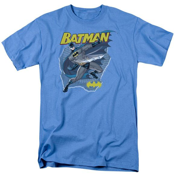 Batman Taste The Metal Short Sleeve Adult Carolina T-Shirt