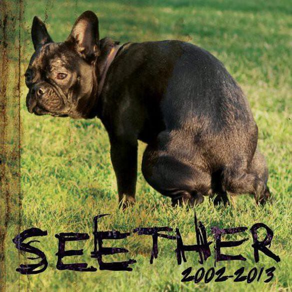 Seether: 2002 2013