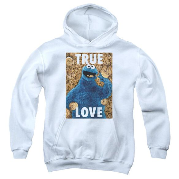 Sesame Street Beautiful Cookies Youth Pull Over Hoodie
