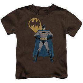 Batman Arms Akimbo Bats Short Sleeve Juvenile T-Shirt