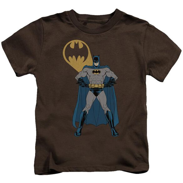 Batman Arms Akimbo Bats Short Sleeve Juvenile T-Shirt