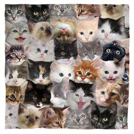 Kittens Bandana