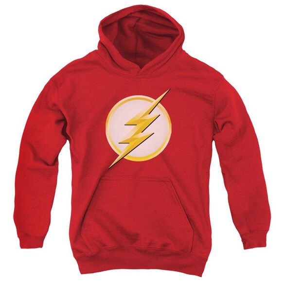 Flash New Logo Youth Pull Over Hoodie