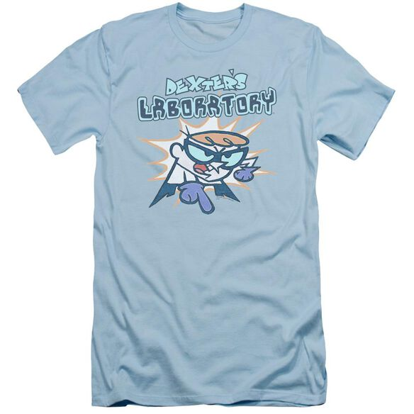 Dexter's Laboratory What Do You Want Short Sleeve Adult Light T-Shirt