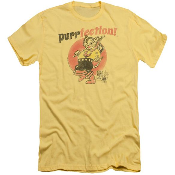 Puss N Boots Purrfection Short Sleeve Adult T-Shirt