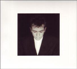 Peter Gabriel - Shaking the Golden