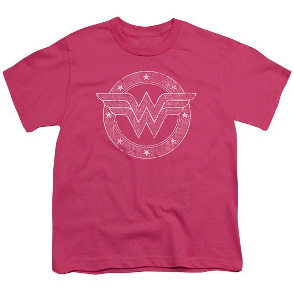 Dc Tattered Emblem Short Sleeve Youth Hot T-Shirt