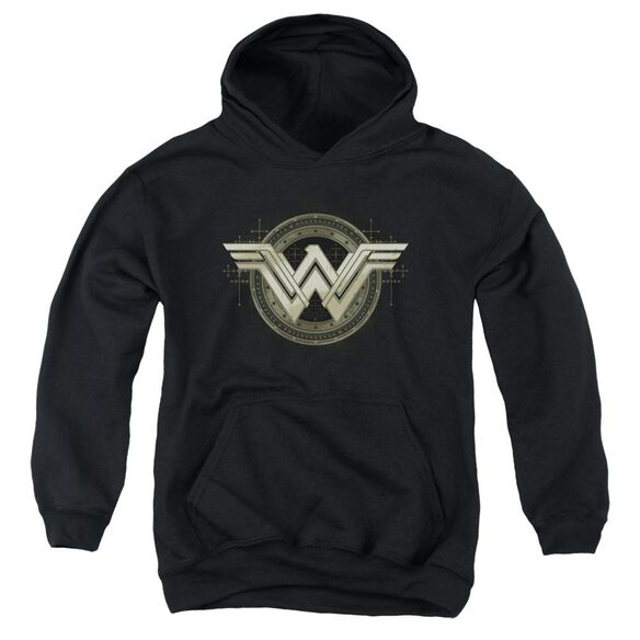 Batman V Superman Ancient Emblems Youth Pull Over Hoodie