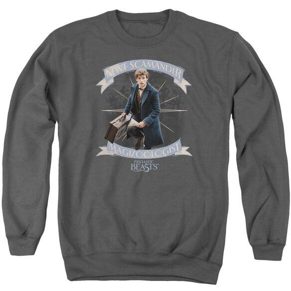 Fantastic Beasts Newt Scamander Adult Crewneck Sweatshirt