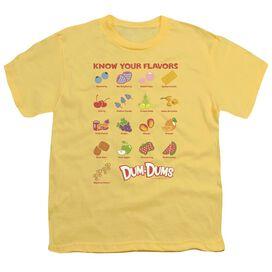 Dum Dums Flavors Short Sleeve Youth T-Shirt