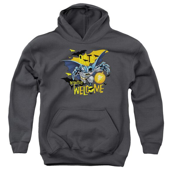 Batman Bats Welcome Youth Pull Over Hoodie