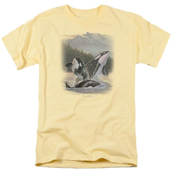 Wildlife Breaching Orcas Short Sleeve Adult Banana T-Shirt