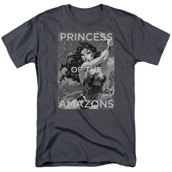 Jla Princess Of The Amazons Short Sleeve Adult T-Shirt