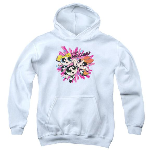 Powerpuff Girls Team Awesome Youth Pull Over Hoodie