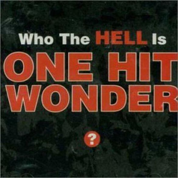 Who The Hell Is One Hit Wonder