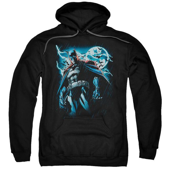 Batman Stormy Knight Adult Pull Over Hoodie