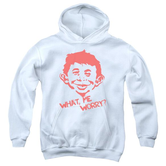 Mad What Me Worry Youth Pull Over Hoodie