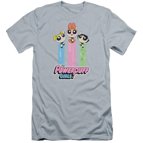 Powerpuff Girls The Girls Fly Hbo Short Sleeve Adult Light T-Shirt