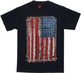 Flag USA Stitch Frame T-Shirt