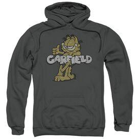 Garfield Retro Garf Adult Pull Over Hoodie