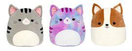 Squishmallow Cats & Corgi 12 Inch (Assorted)
