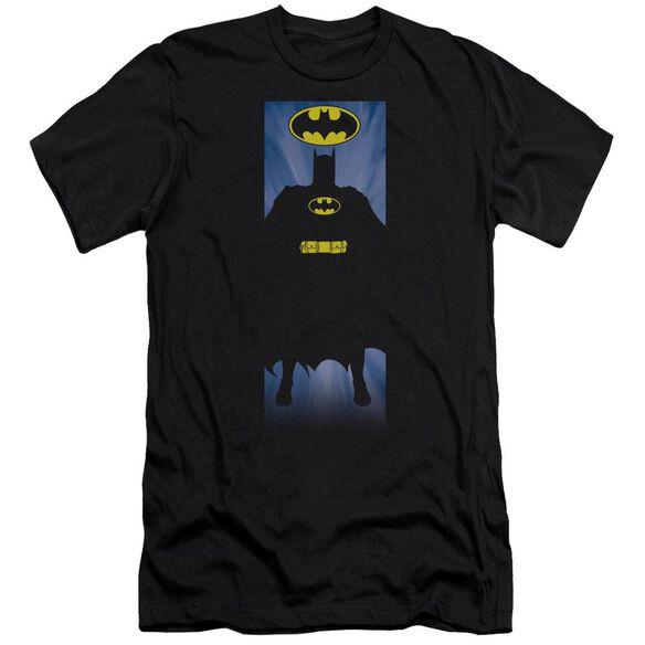 Batman Batman Block Short Sleeve Adult T-Shirt