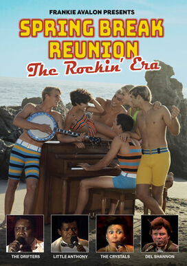 Spring Break Reunion: The Rockin' Era (Various Artists)