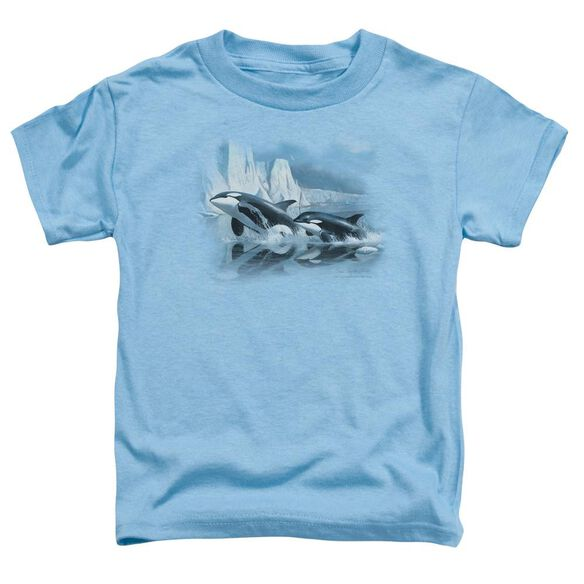 Wildlife Glaciers Edge Orcas Short Sleeve Toddler Tee Carolina Blue T-Shirt
