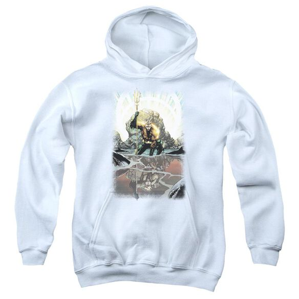 Jla Brightest Day Aquaman Youth Pull Over Hoodie