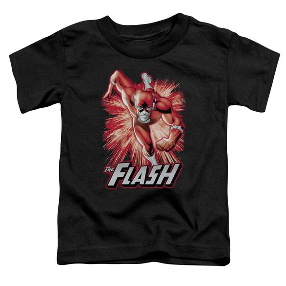 Jla Flash Red & Gray Short Sleeve Toddler Tee Black Md T-Shirt