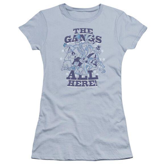 Looney Tunes Gang Hbo Short Sleeve Junior Sheer Light T-Shirt