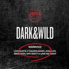 Bts - Dark & Wild Vol.1 (Incl. 102-page photobook and two random photocards)