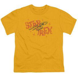 STAR TREK HALFTONE LOGO - S/S YOUTH 18/1 - GOLD T-Shirt