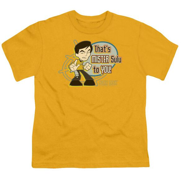 Quogs Mr Sulu To You Short Sleeve Youth T-Shirt