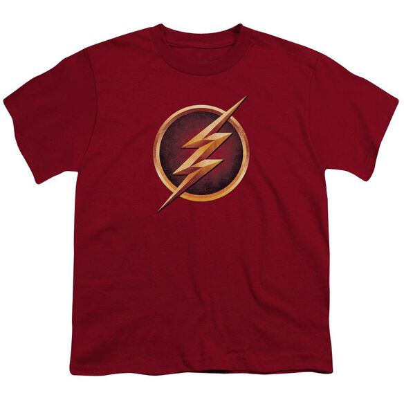 The Flash Chest Logo Short Sleeve Youth T-Shirt