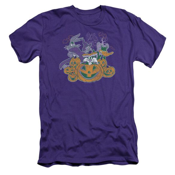Looney Tunes Spooky Pals Short Sleeve Adult T-Shirt