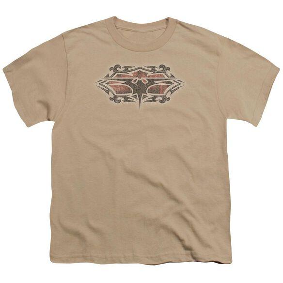 Batman Distressed Gothic Bat Short Sleeve Youth T-Shirt