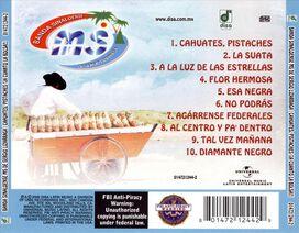 Banda Sinaloense Ms de Sergio Lizarraga - Suata