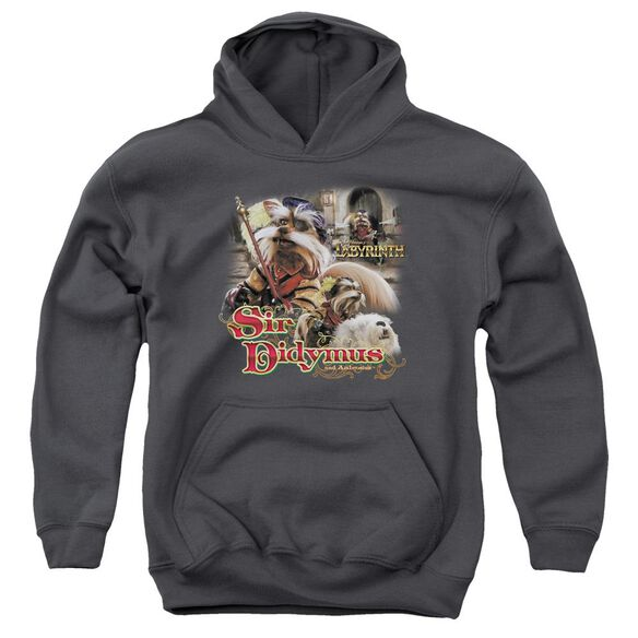 Labyrinth Sir Didymus Youth Pull Over Hoodie